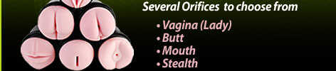 several fleshlight orifices to choose from